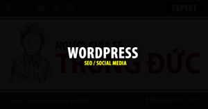 WordPress SEO & Social Media